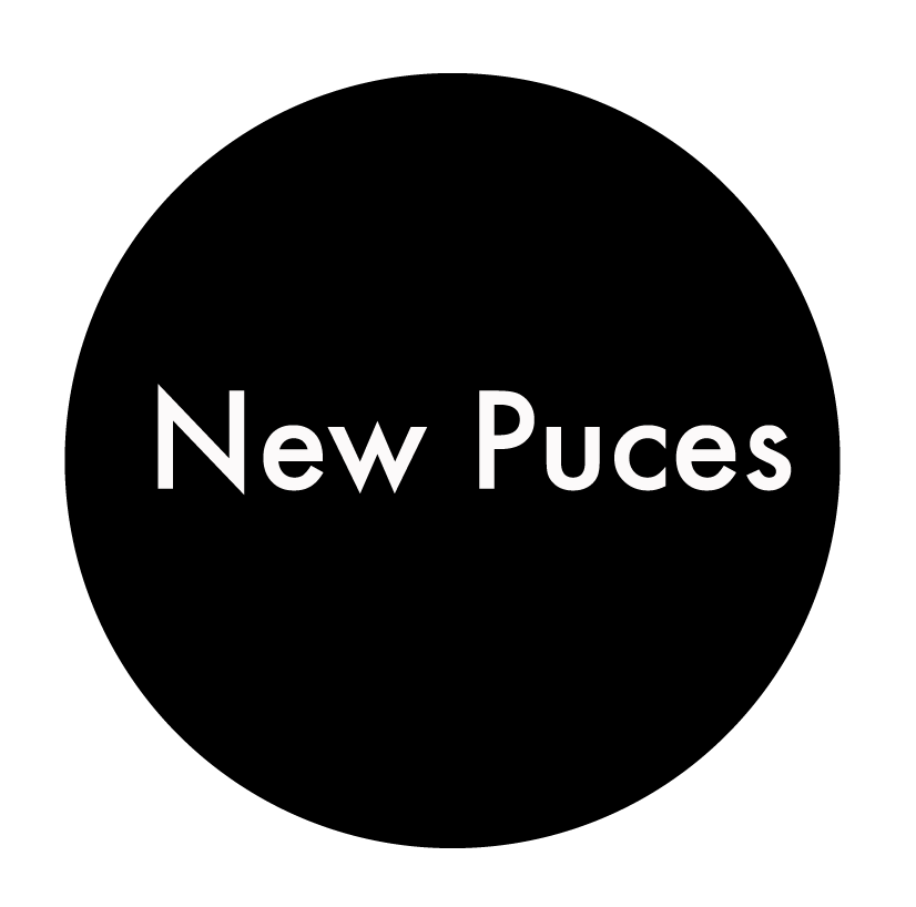 Logo New Puces friperie Montpellier