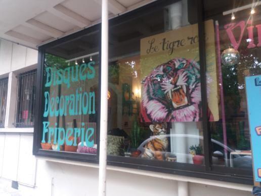 Photo lookbook #5 le tigre rose friperie Toulouse